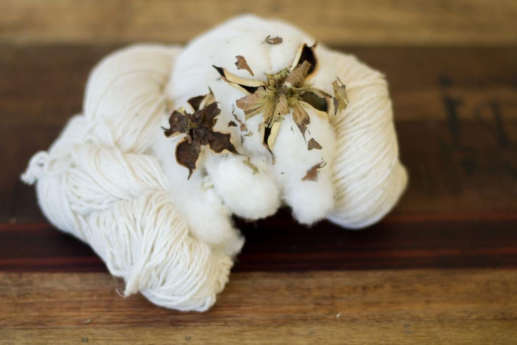 Old Dominion Cotton Cestari Sheep & Wool Co.