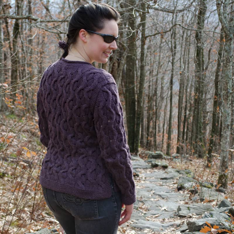 Alternating Paths Sweater back