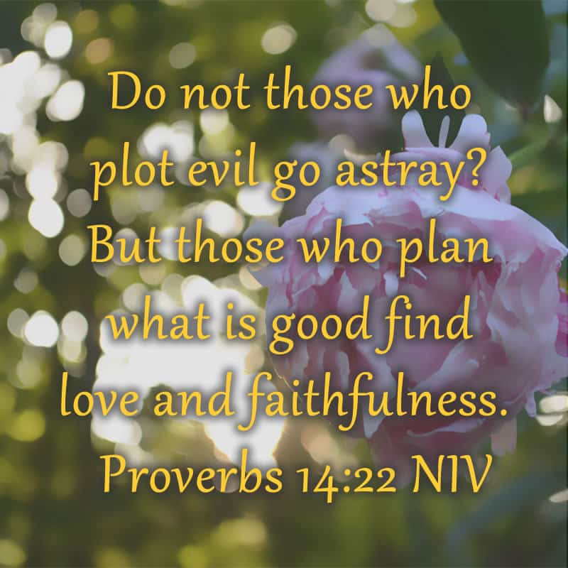verse of the day Proverbs 14:22