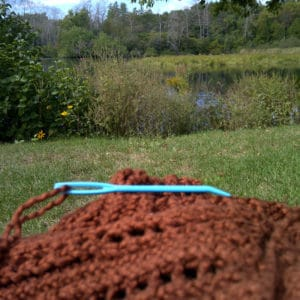 knitting by the pond