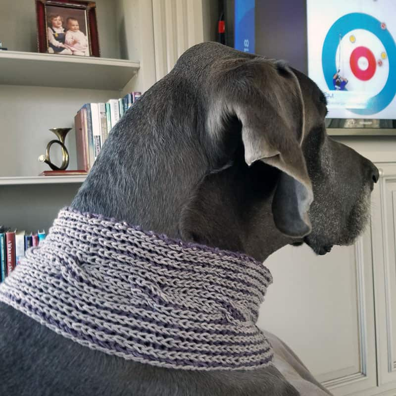 puddles modeling cowl