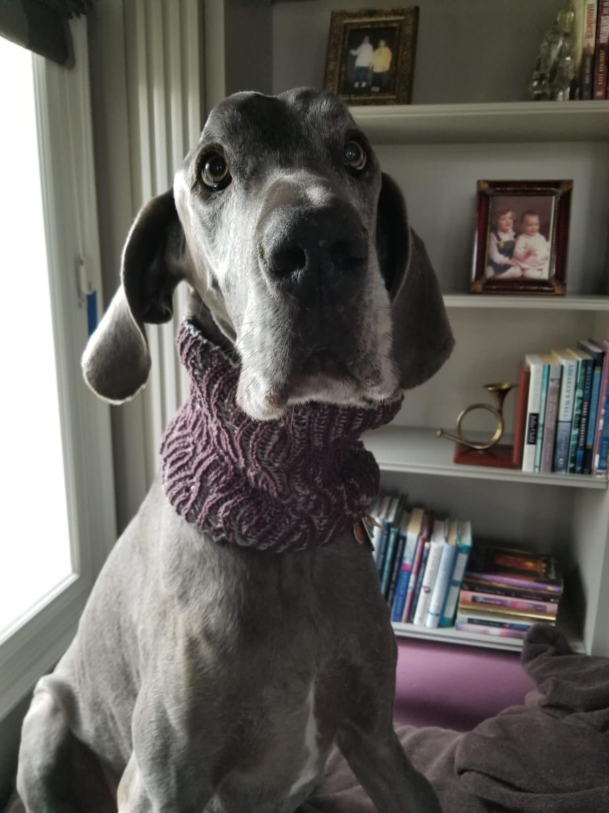 Puddles in Rolling Tide Cowl