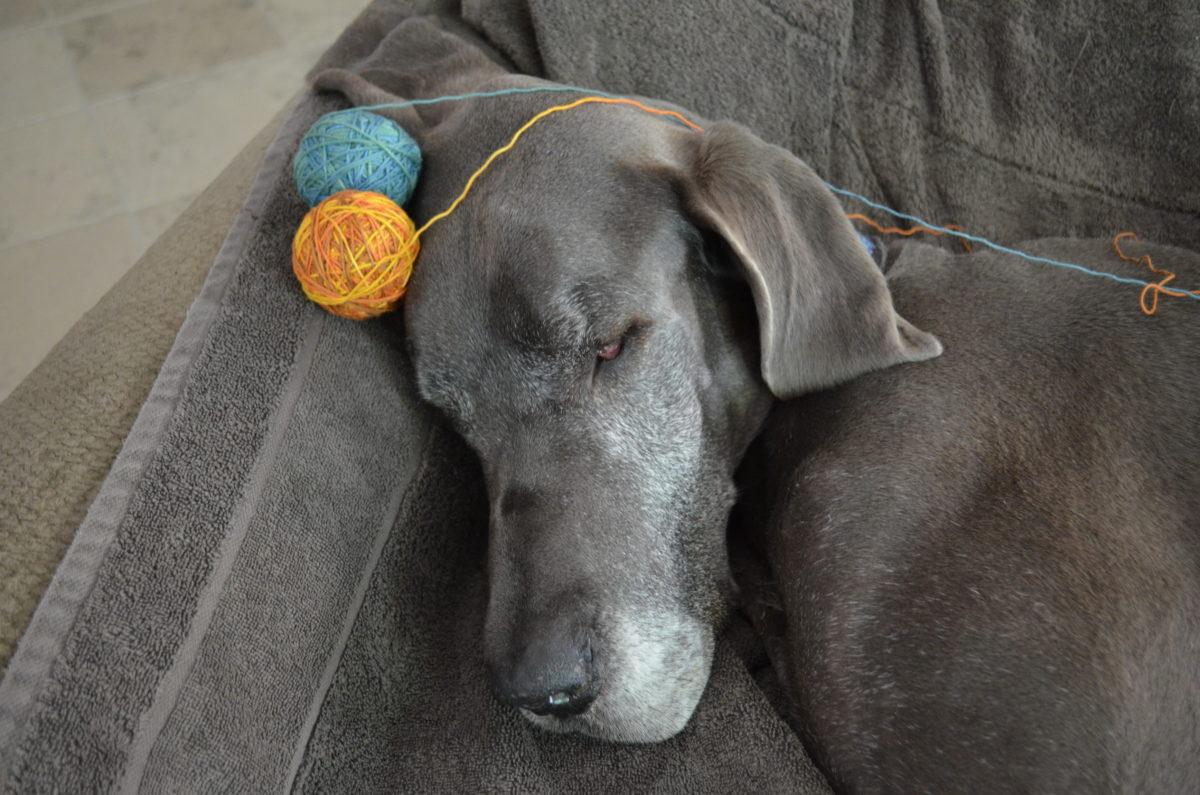 Puddles with Terran MKAL yarn