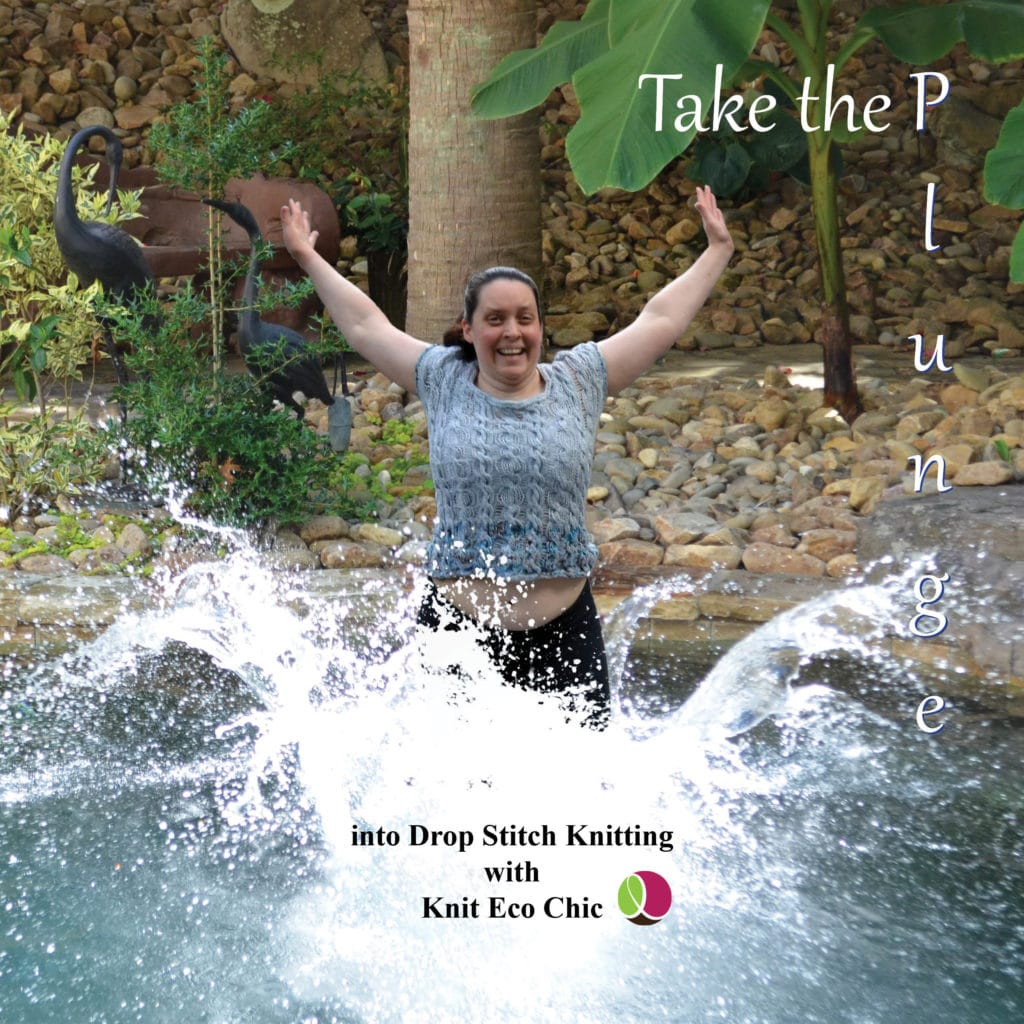 Take the Plunge book cover
